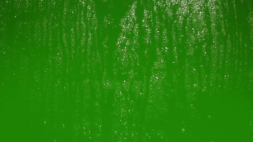 Rain drops on glass. Green screen backround. Chroma key.