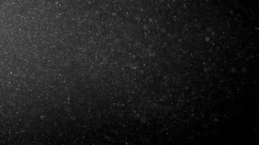 Natural Organic Dust Particles Floating On Black Background. Glittering Sparkling Particles Randomly Spin In The Air With Bokeh. White Dynamic Particles With Slow Motion. Particles Shimmering In Space | Shutterstock HD Video #1007091022