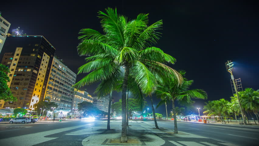 Night time lapse of a palm tree by the Copacabana Beach in Rio De Janeiro, Brazil.