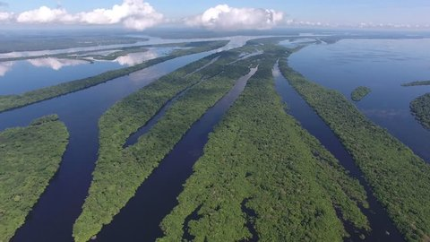 Aerial view of Anavilhanas, the biggest fluvial archipelago of the world, at Negro River, Amazon jungle, Novo Airão city, Amazonas, Brazil