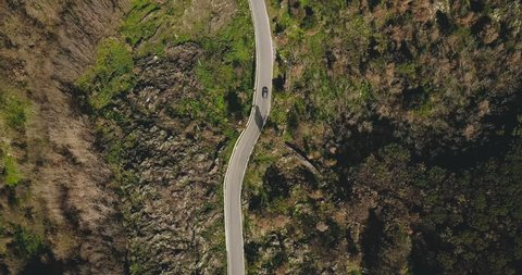 Aerial. Drone follows car on mountain road turns. Birds eye view on a narrow sunny forest driveway. Driving pleasure. 4K