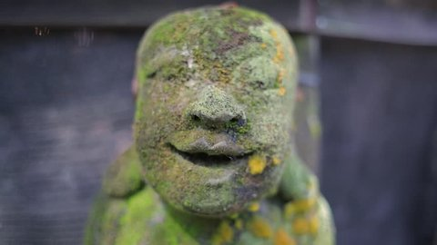Green Statue sculpture of a buddha face smiliing covered by moss
