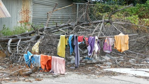 The poor dry things on the branches on the trees. Poor homeless people dry their things on the streets of the city