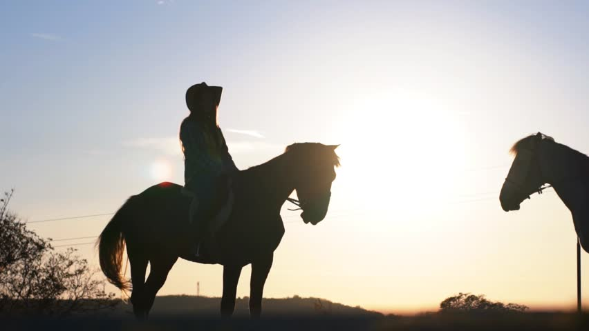 SLOW MOTION: Silhouettes of a young couple sitting on horse's back, with bright sunset light in the background #1008060292