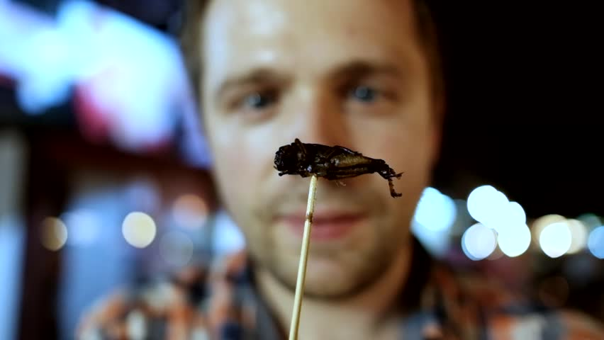 Caucasian young male eating cricket at night market in Thailand. Eating insect concept | Shutterstock HD Video #1008069952