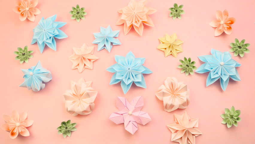 Beautiful colorful video background with flowers frame. stopmotion 4k video