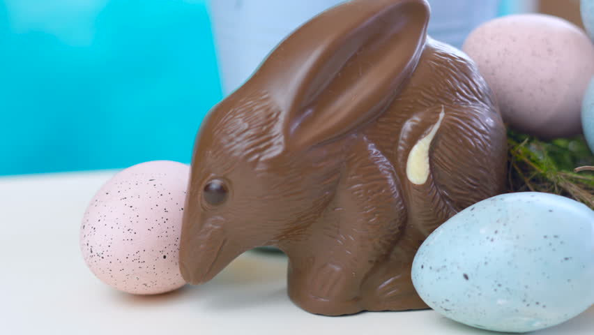 Australian milk chocolate Bilby Easter egg with eggs in nest against a blue and white background, dolly macro.