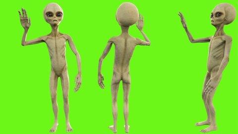 Alien salute. Loopable animation on green screen. 4k.