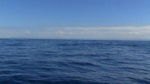 Humpback Whales (Megaptera novaeangliae) swim in Victoria sea. Blue sea balance. Blue sky. Image in Espirito Santo, Brazil.