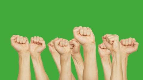 People raising up clenched fist on meeting in crowd on green background. Crowd moving up hand fists on green chroma key background. Alpha channel, keyed green screen.