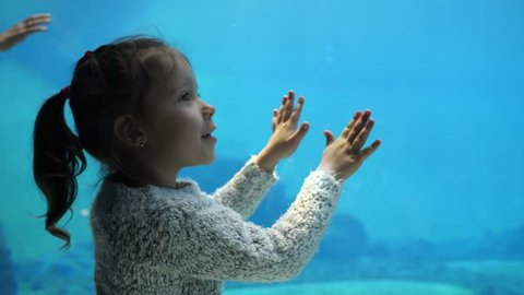 Little child girl watches admires penguins behind glass under water aquarium in zoo