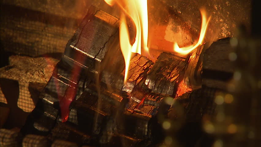 Close up shot of black smooth coals burning in a fireplace. #1008824522