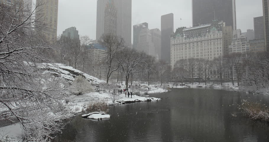 New York City Central Park in snow | Shutterstock HD Video #1008879662