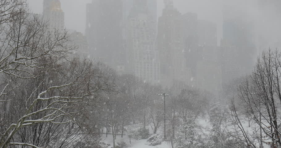 New York City Central Park in snow | Shutterstock HD Video #1008879692
