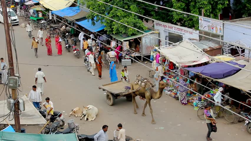 Fatehpur Sikri, Uttar Pradesh, India – Jul 13, 2011: local man riding camel carriage on busy street with vehicles, pedestrians and cows lying on road. Surreal, weird concept