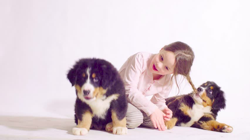 Girl Playing With Two Puppies Stock Footage Video 100 Royalty Free 1009271132 Shutterstock
