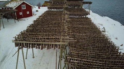 4k Drone footage - Racks of dried cod fish in Reine, Norway.  Lofoten Islands