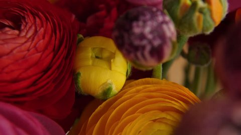 Bunch of colorful flowers, slide in top shot.