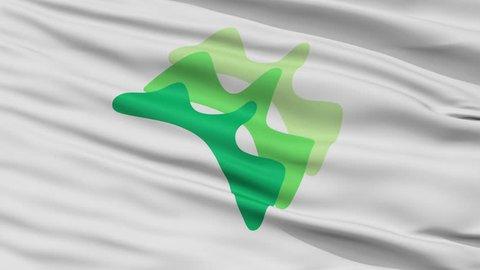 Yamanashi close up flag, Yamanashi prefecture, realistic animation seamless loop - 10 seconds long