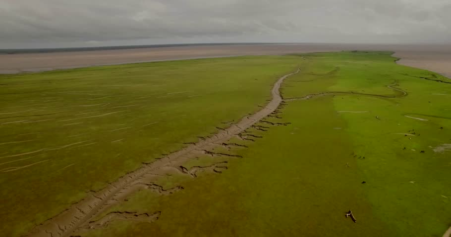 Aerial over lush grass plane on Marajo Island Amazon River over tributary carved out in the mud landscape beside the river