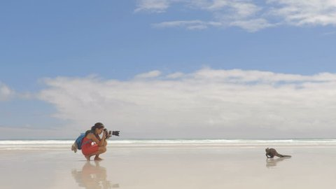 Travel adventure tourist nature photographer on vacation on Galapagos beach with Iguana walking by on Tortuga bay beach, Santa Cruz Island, Galapagos Islands. Funny holidays video, Ecuador.
