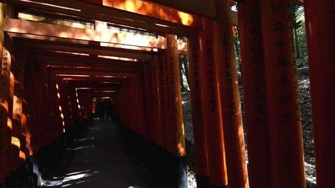 Beautiful tunnel of torii doors in the Fushimi Inari shrine of Kyoto, Japan