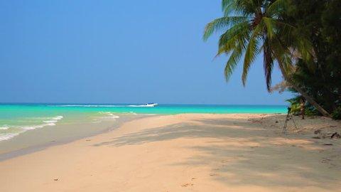 Blurred background: Tropical beach and sea.