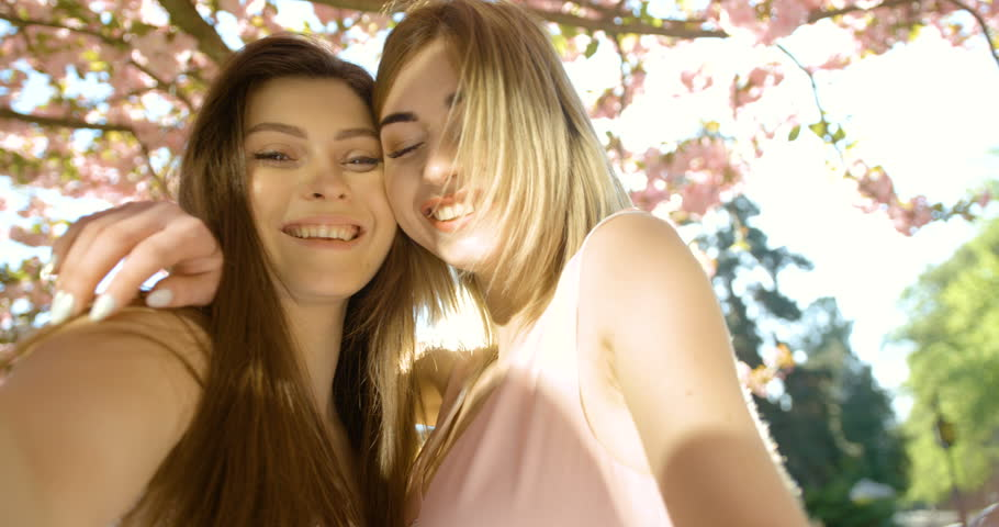 ba76a88d Two attractive young blonde and brunette girl friends are hugging and  smiling while taking selfies in sunny blooming sakura garden. 4k footage.
