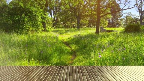 Wooden Picnic Table Top, Green Park Grass Nature Garden Background