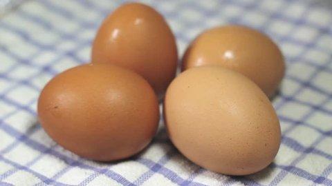 four eggs video