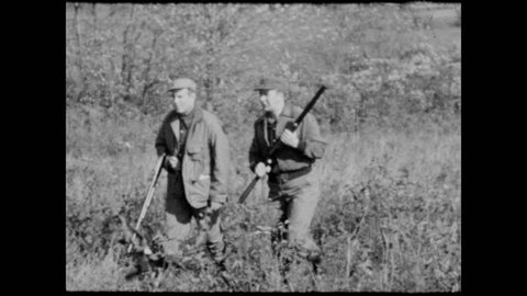 1950s: Hunters talk and point. Dog points at bush. Pheasant flies from bush. Hunter fires and bird drops to ground. Man reloads shotgun. Dog carries pheasant in mouth.