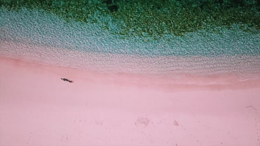 Pink Beach Komodo National Park Young Woman Walking On The Beach Aerial View 2 4K