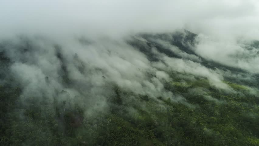 Mist and clouds above jungle in Central America