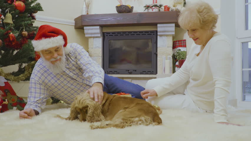 Mature woman with husband stroking dog sitting on floor near Christmas tree | Shutterstock HD Video #1011438782