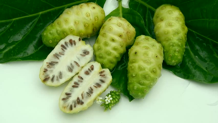 Top view fresh noni fruit in leaf on white background and poring water clips | Shutterstock HD Video #1011458162