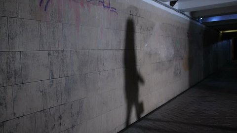 Shadows of female walking alone at dark subway passage at night, and male shadow following her. Lonely young woman being chased by stalker, killer or attacker in hooded jacket at pedestrian underpass