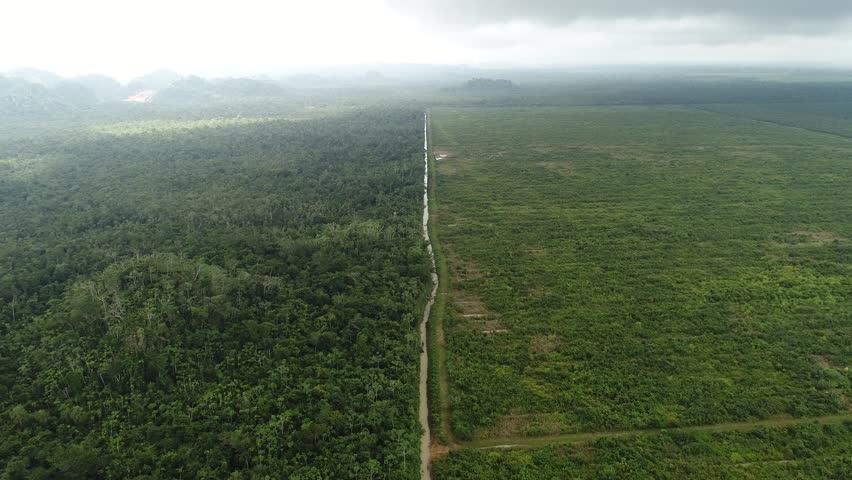 Farm land next to Jungle aerial survey