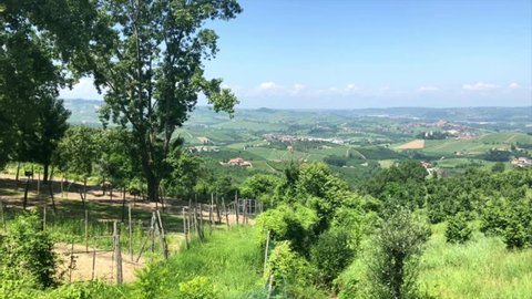 Ostrich farm and a pitoresque town in Langhe region in Piedmont, Italy. Italian agriculture. Unesco world heritage site.
