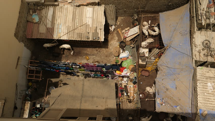 African city: backyard with goats and laundry in Dakar, Senegal. Top shot.