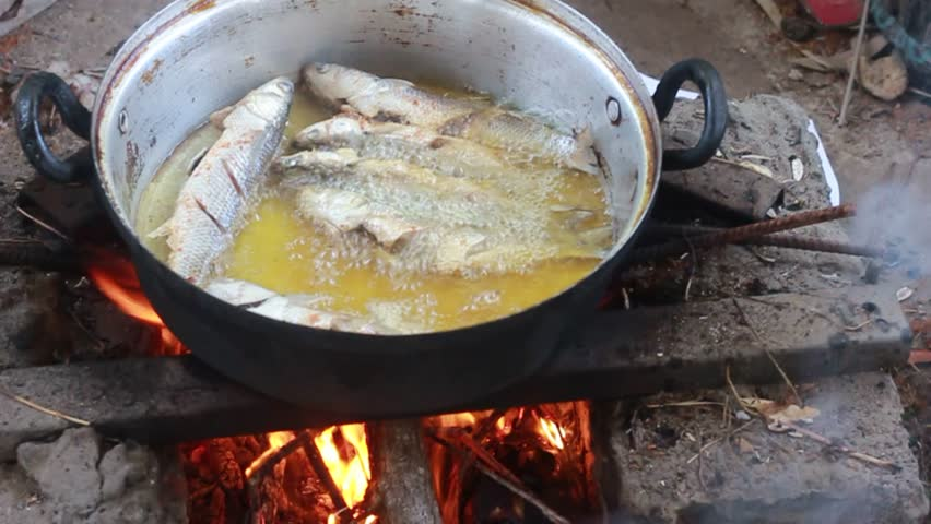 Cooking fish on wood fire. Fresh fish outdoors. | Shutterstock HD Video #1012386512