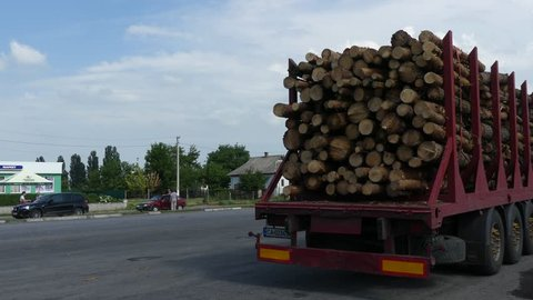 The truck transports logs, on the road. Cut logs are loaded on a truck.