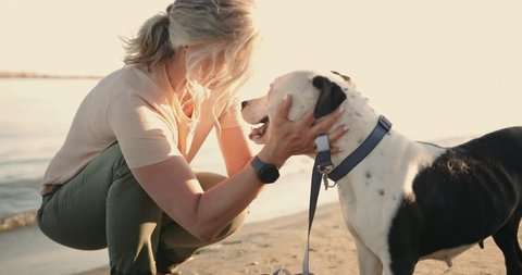 Loving mature woman petting dog and enjoying afternoon walk on the beach in summer