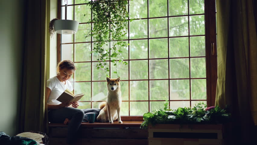 Pretty young woman is reading book sitting on windowsill and looking outside together with cute pedigree dog. Beautiful green plants, modern interior and curtains are visible. | Shutterstock HD Video #1012911782