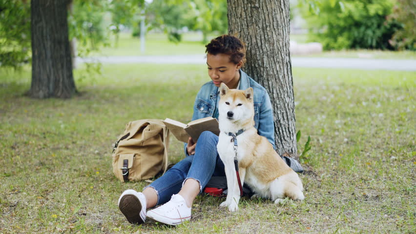 Pretty African American girl student is reading book sitting in park on lawn while her well-bred dog is sitting near her and smelling air and looking around. #1012911932