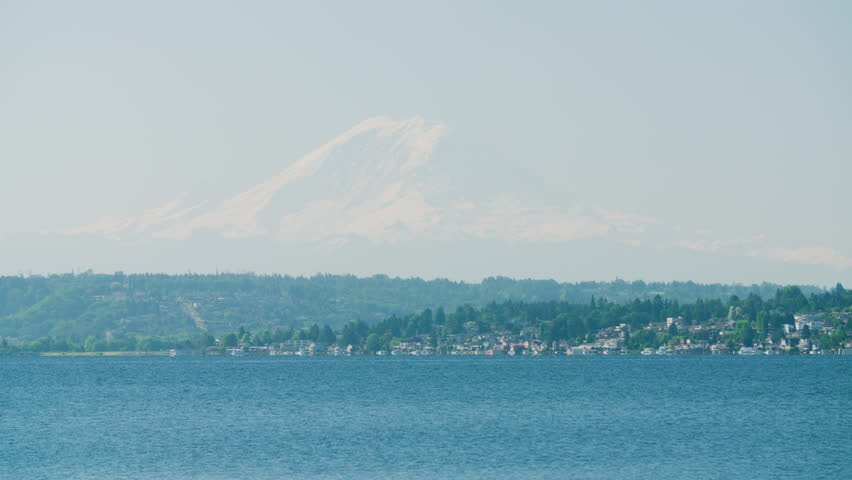Mount Rainier Huge Mountain Skyline Above Lake Washington Bird Flying Past - Seattle Pacific Northwest