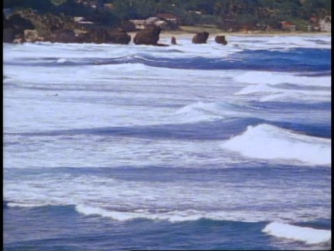 BARBADOS, 1982, Atlantic Ocean, surf crashing, tropical, palms