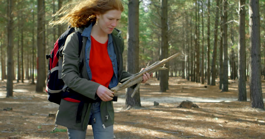Young woman collecting wooden sticks in the forest 4k #1013521742
