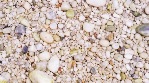 Pebble beach: background of pebbles submerged in water, that flows back and forth in the sunlight. Real time.