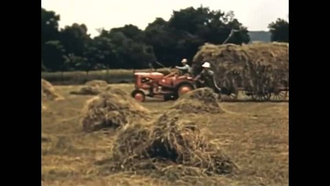 CIRCA 1950 - Grass farmers are advised on when and how to store their crops.