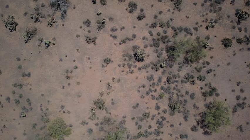 Aerial Drone shot of desert birds eye view